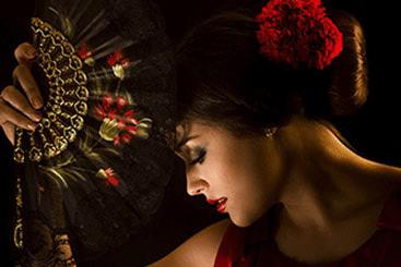 Puro Flamenco.Arte puro