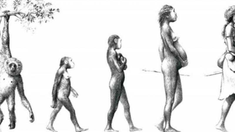 La aventura de la mujer prehistórica