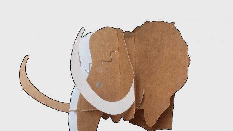 Descubriendo los mamuts