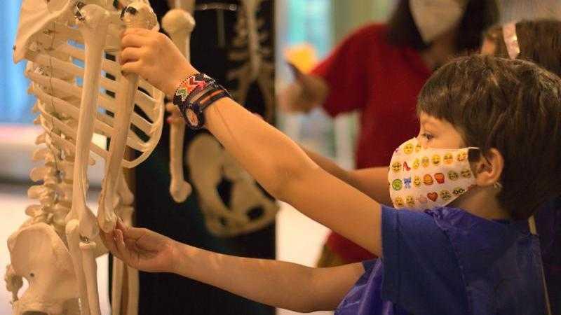 Extraescolares Científicas en el Museo