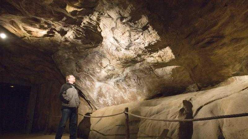Visita guiada a la Cueva de Cuevas del Parque de la Prehistoria
