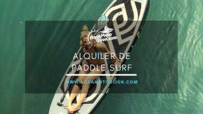 PADDLE SURF  (sin monitor)