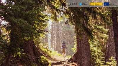 O Bosque dos Nosos Ancestros en Lugo