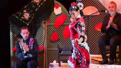 La Cuna del Flamenco