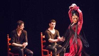 Ballet Flamenco José Porcel - Impulsos