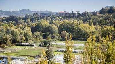 Visita guiada a las huertas de Pamplona