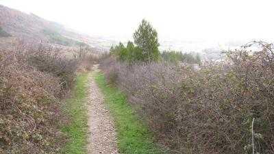 PAMPLONA ES VERDE-Salida al Monte Ezkaba: el valor de lo cercano